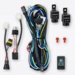 Dual Output Plug & Play Wiring Harness