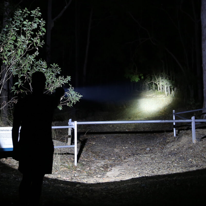 LED Hunting Lights